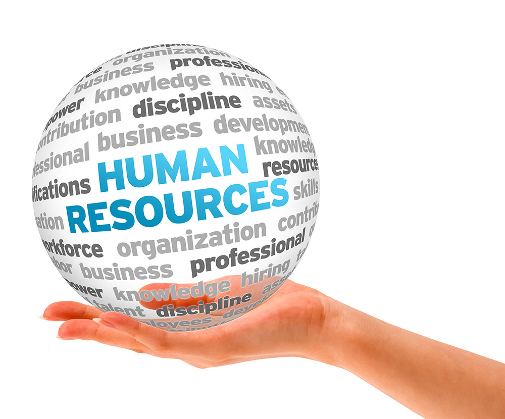 Nadebi Consult Human Resources